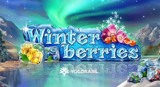machine à sous jeu gratuit Winterberries